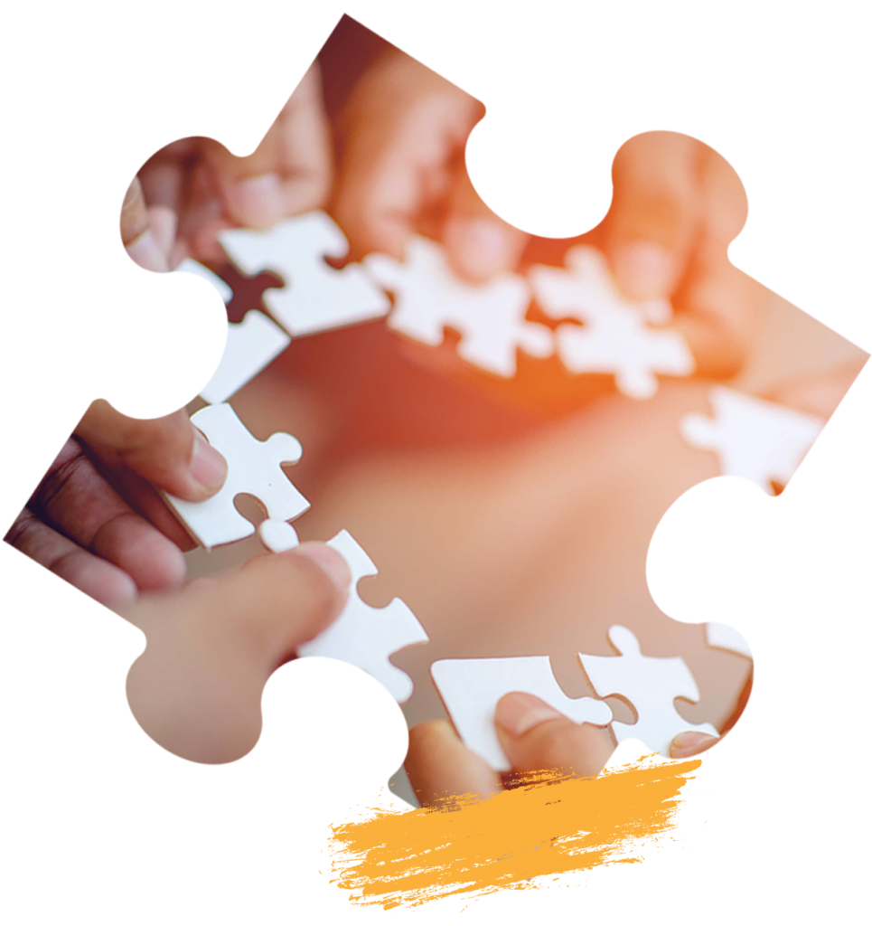 Sentinelle vers l'Autonomie Et l'Inclusion Sociale des Personnes avec Autisme